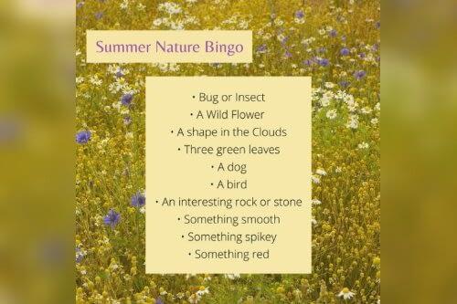 summer activities nature bingo